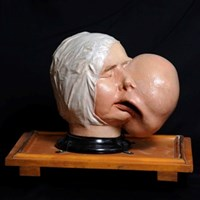 Preserving and modelling the body: technique in anatomical practice and visual arts at the Royal College of Surgeons of Edinburgh, 1700-1850