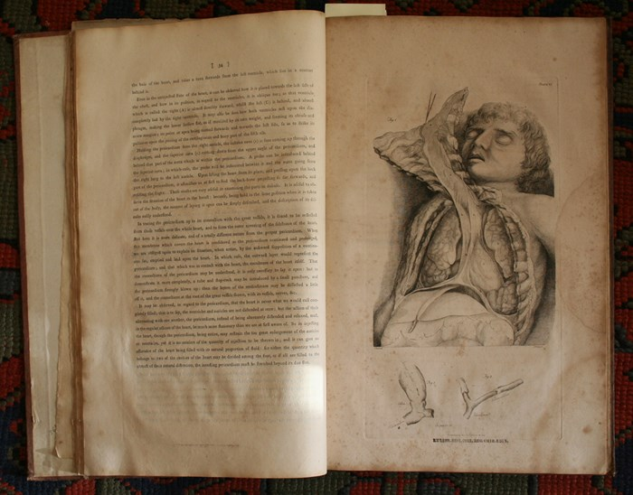 Charles Bell's 1798 System of dissections